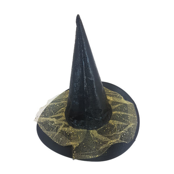 Black snake skin Which hat with gold netting embelishment 1