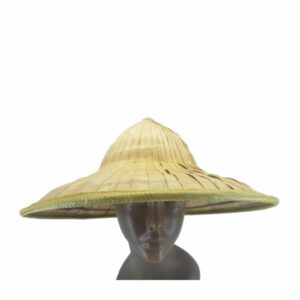 New-Chinese leaf rice hat