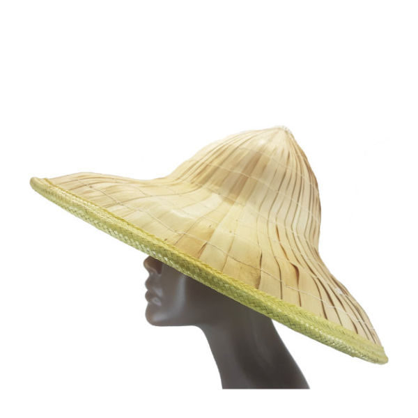 New-Chinese leaf rice hat 2